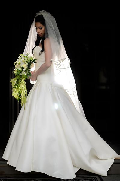 Dena and Navid Wedding Pictures-124