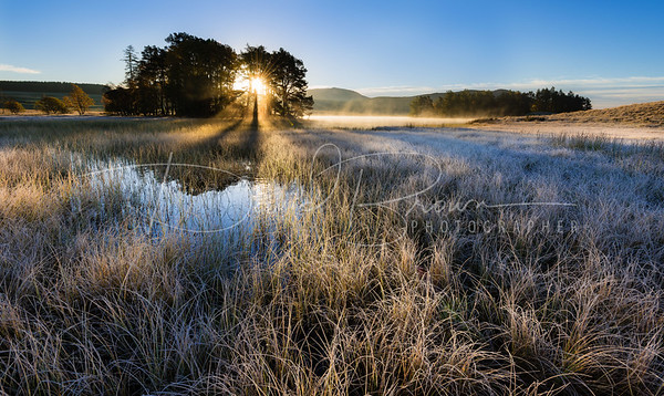 Moraig Morning