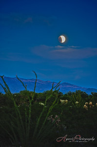 A lunar eclipse as dusk settles over the Tucson desert