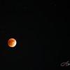 Full moon, lunar eclipse