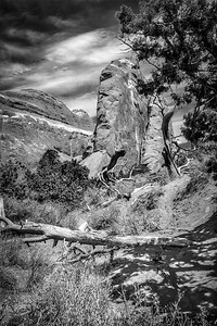 On the Trail in Arches-2