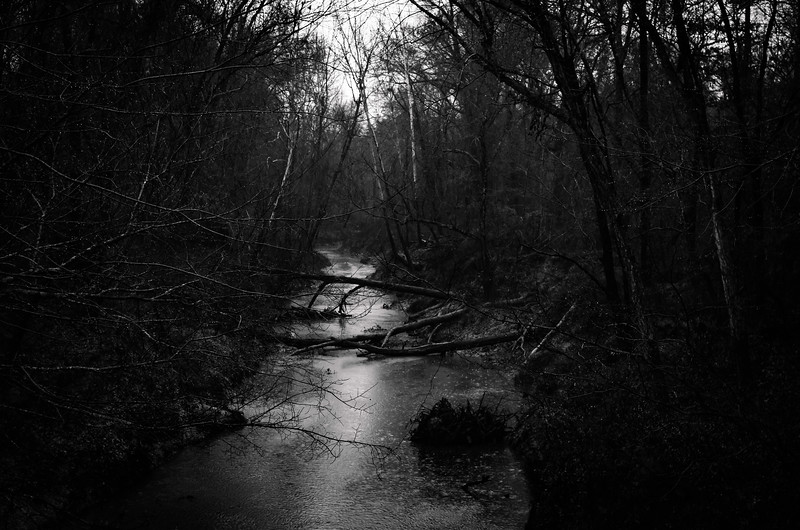 From Darkness Flows Forever
