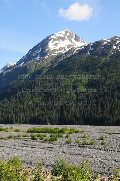 Resized_Alaska_Card_009_0014