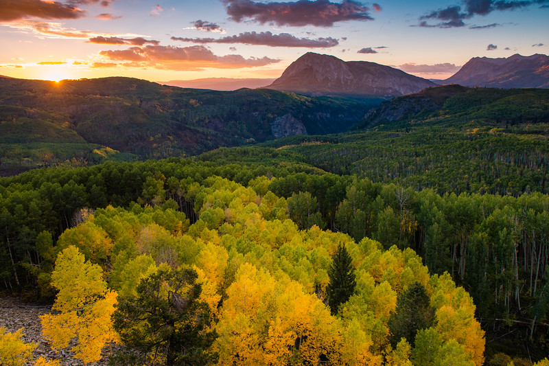 The Raggeds Wilderness holds one of the largest aspen stands in the world.