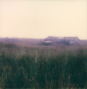 Taken on Polaroid SX-70