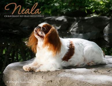 Neala 8_14-2011 w font