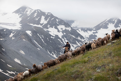 We encountered a shepherd as we hiked along the ridge, Mongolia