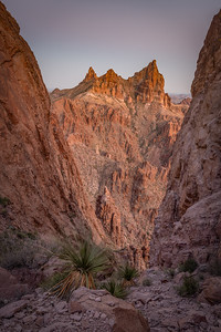 Kofa National Wildlife Refuge, Arizona. Copyright © 2020 All rights reserved.