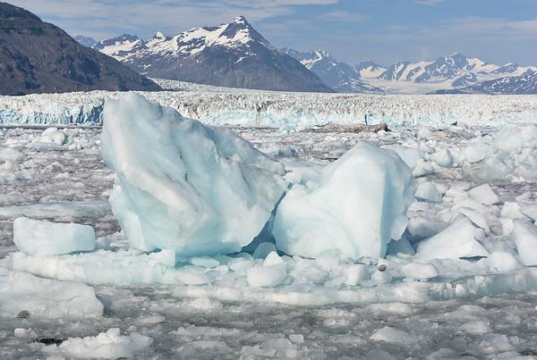 Icebergs and the Columbia Glacier