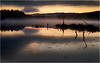 Adirondacks Utowana Lake Before Sunrise with Deadfall October 2009