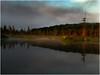 Adirondacks Forked Lake June 2010 Swamp Morning 5