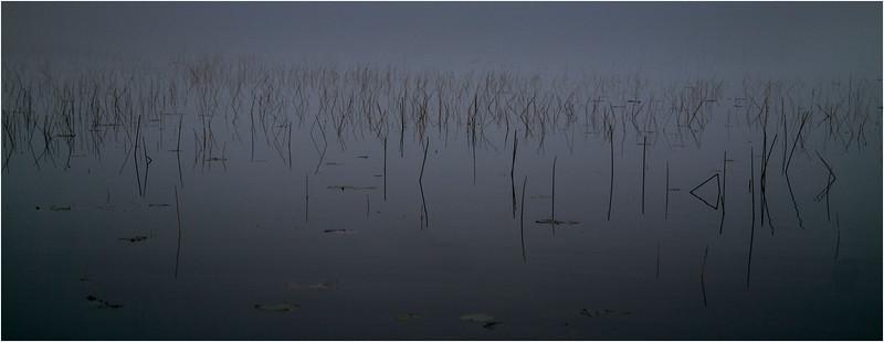 Adirondacks Whitney Wilderness Round Lake Mist Reeds September 2013