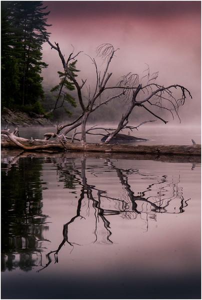 Adirondacks Chateaugay Lake Duck Island Bay 6 July 2016