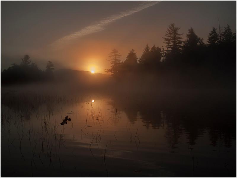 Adirondacks Whitney Wilderness Round Lake Sunrise in Morning Mist 6 October 2011