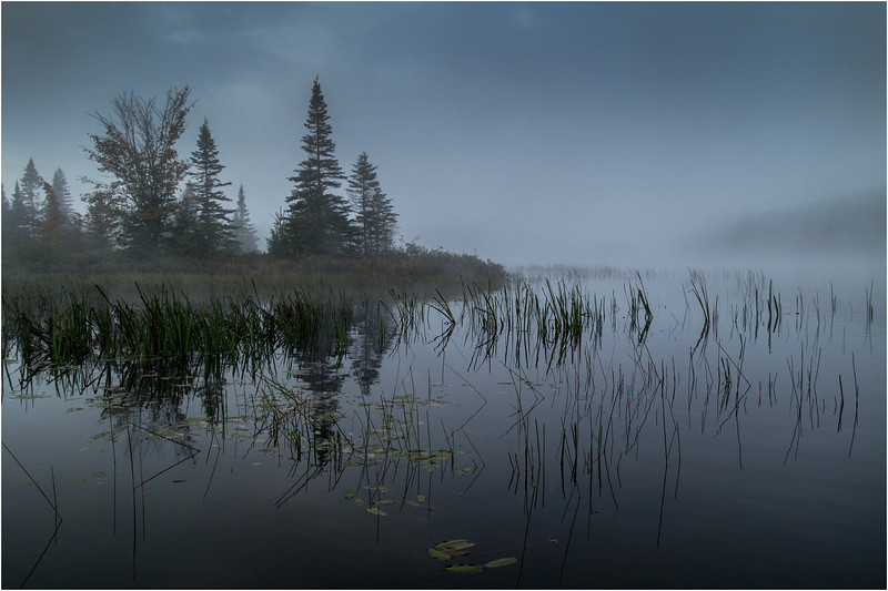 Adirondacks Cedar River Flow Before Sunrise Mist with Point and Reeds 2 September 2013