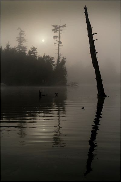 Adirondacks Blue Mountain Lake Islands and Sentinal Tree with Sun July 2013