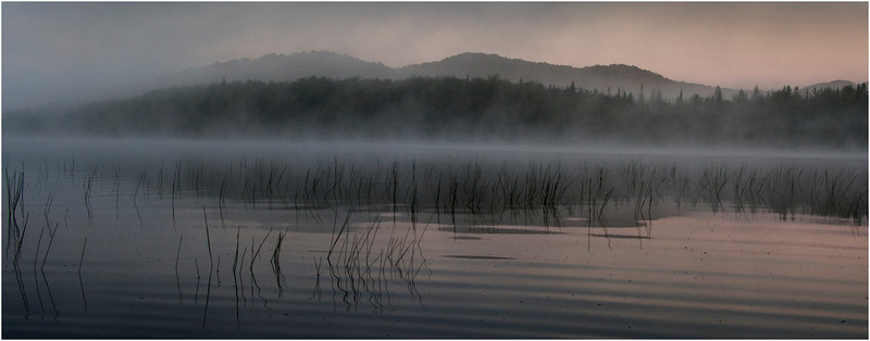 Adirondacks Cedar River Flow Morning Mist Reeds and Distant Hills 2 July 2009