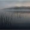 Adirondacks Cedar River Flow Morning Mist Reeds and Distant Hills 3 July 2009