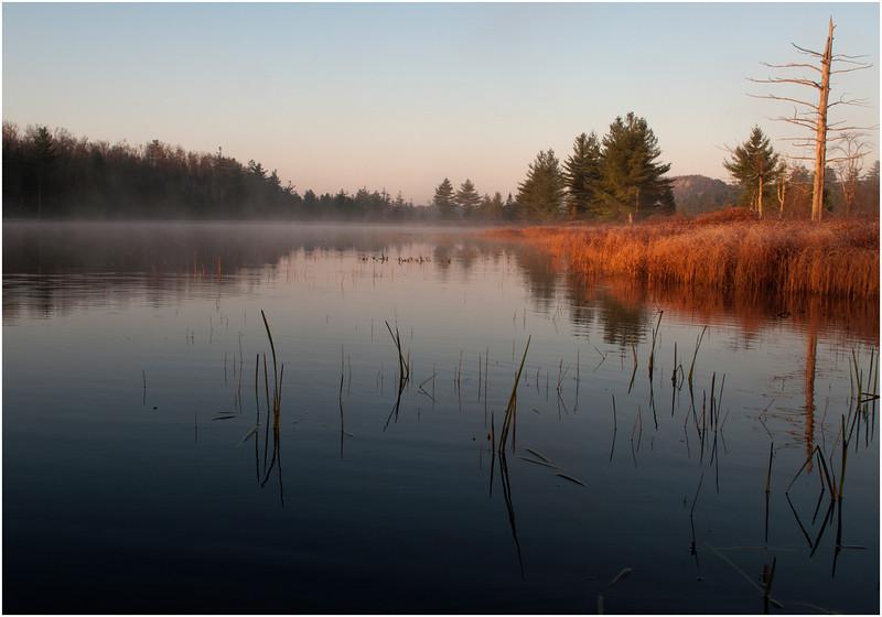Adirondacks Bog River October 2011 Mist Shore Morning Light 5