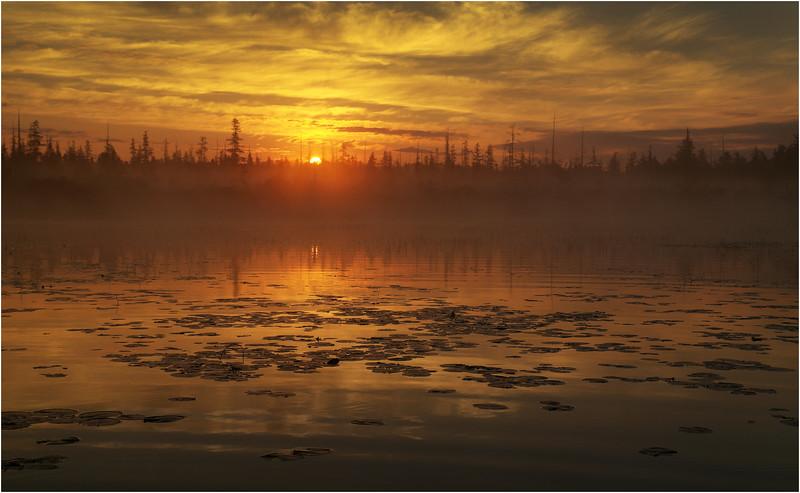 Adirondacks Whitney Wilderness Round Lake Sunrise 5 July 2012