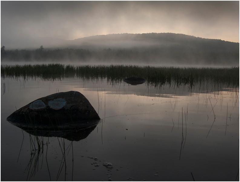 Adirondacks Cedar River Flow Morning Mist Rock, Reeds and Distant Hills 2 July 2009