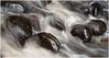 Adirondacks Forked Lake Trout Stream Detail 2 June 2009