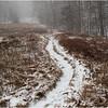 Adirondacks Heart Lake Path up the Slope 1 November 2012