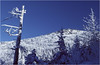 Adirondacks Wright Peak from Algonquin Trail January 1977