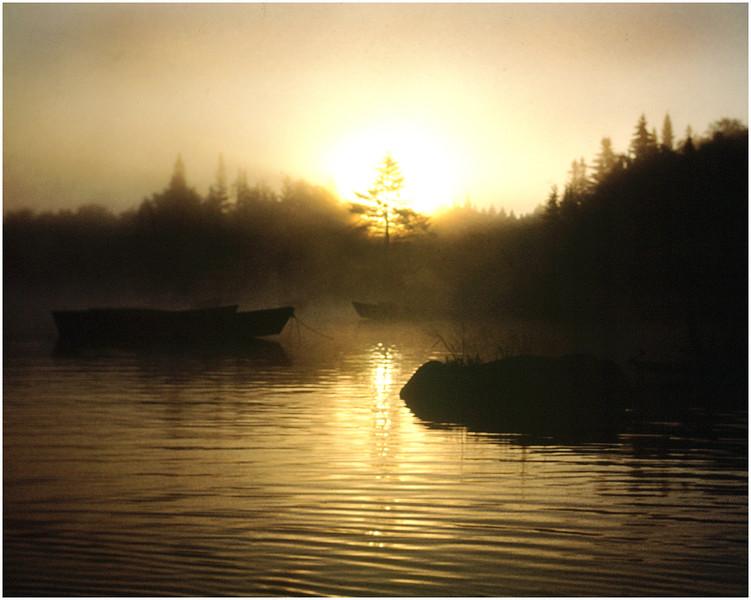 Adirondacks Classic Forked Lake Sunrise with Tree & Boats