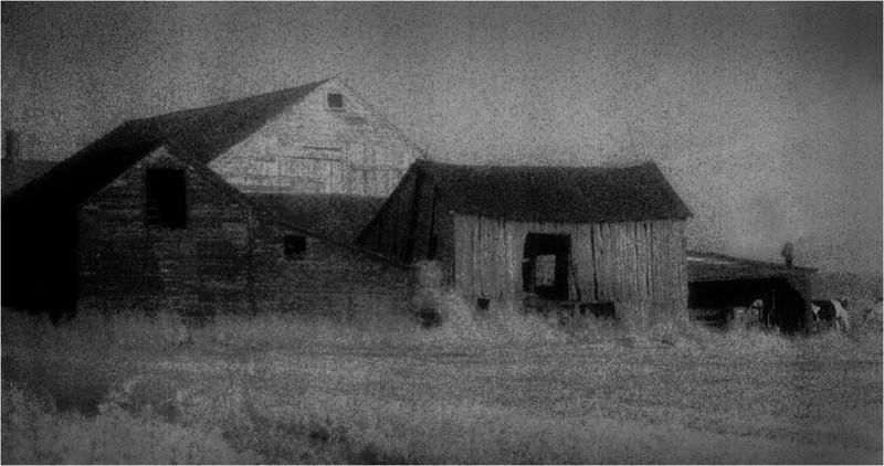 Rennselaer County NY Barn Cluster IR Film June 1982