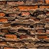 Albany NY Brick and Mortar 2008