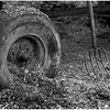ADK Document Tire and Pitchfork Moran Farm Reber