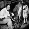 ADK Document  Father at Ellenburg Ctr Farm
