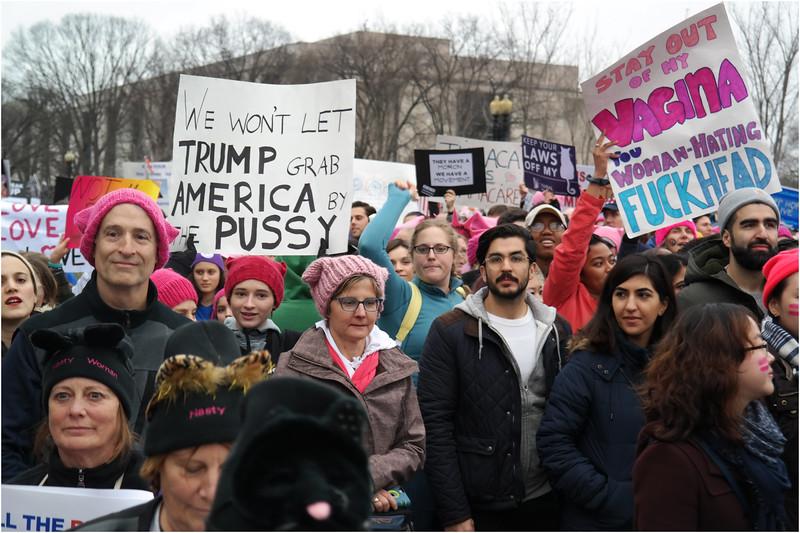 A Washington DC Womens March 87 January 21 2017