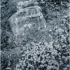 Adirondacks Newcomb NY Cemetery 7 DUO May 2016