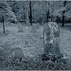 Middleberg NY Cotton Hill Cemetery 15  Duo June 2016