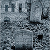 Middleberg NY Cotton Hill Cemetery 36 DUO June 2016