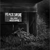 67 Rensselaer County NY Peace Shrine  2 May 2003