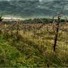 Slingerlands NY Krumkill Road November 2015 Fence 2