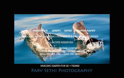 Portfolio - Oceanography