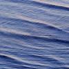 Oceanography_030
