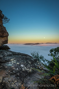 Moon setting just before sunrise, with fog filling the  Hawkesbury River valley, Mount White, New South Wales, Australia.