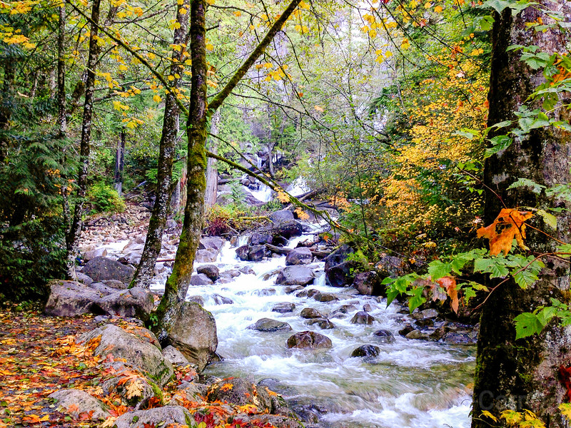 Fall at Shannon Falls Provincial Park BC on road to Whistler