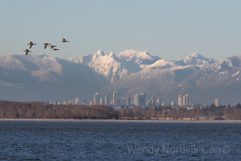Spectacular city of snow and ice, Metro Vancouver
