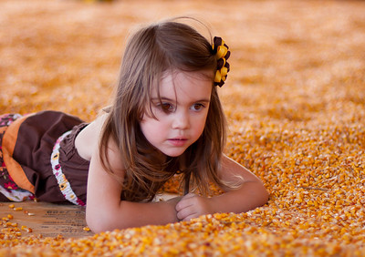 Corn pit at Fifer Orchards