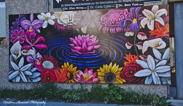 "606 Ellice Avenue - ""Flowers of the World"""
