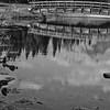 Sedoka - The Pond