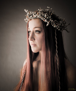 """Enchanted"", Honours at Christchurch Photographic Society and 10,000 views 1,300+ favourites on DeviantArt"
