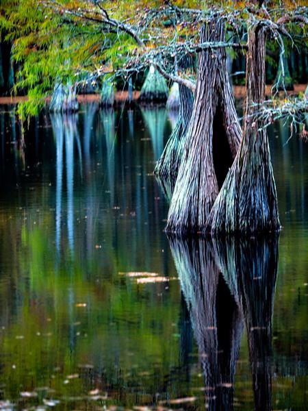 Carvers Creek
