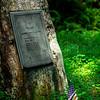 Pisgah Forest